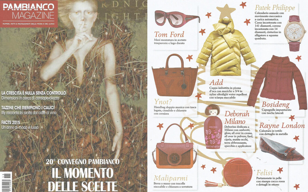 Rayne on PAMBIANCO issue December 2015